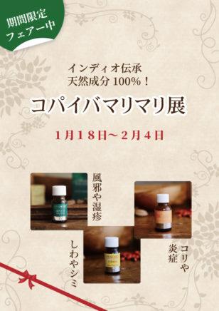 森の恵みコパイバマリマリ展 / 1月18日(月) ~ 2月8日(月)